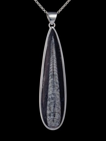 Fossil silver pendant
