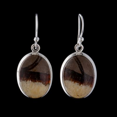 Yellow septarian silver earring