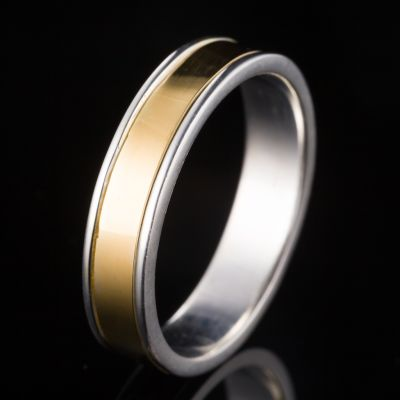 Silver ring with gold ring